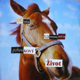 nervuska-arte.sk